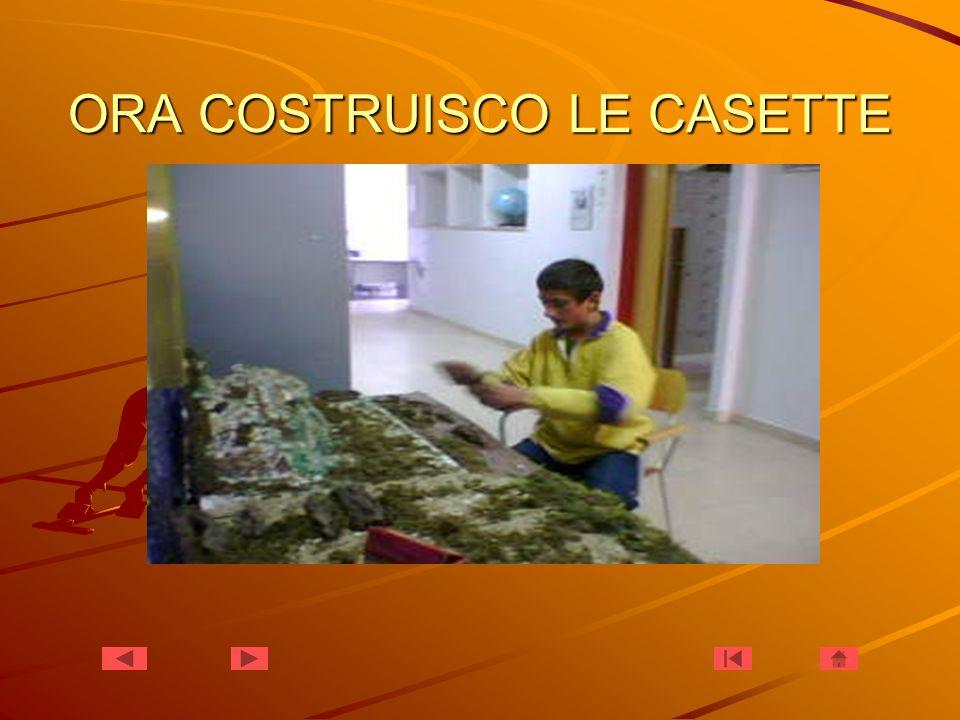 ORA COSTRUISCO LE CASETTE