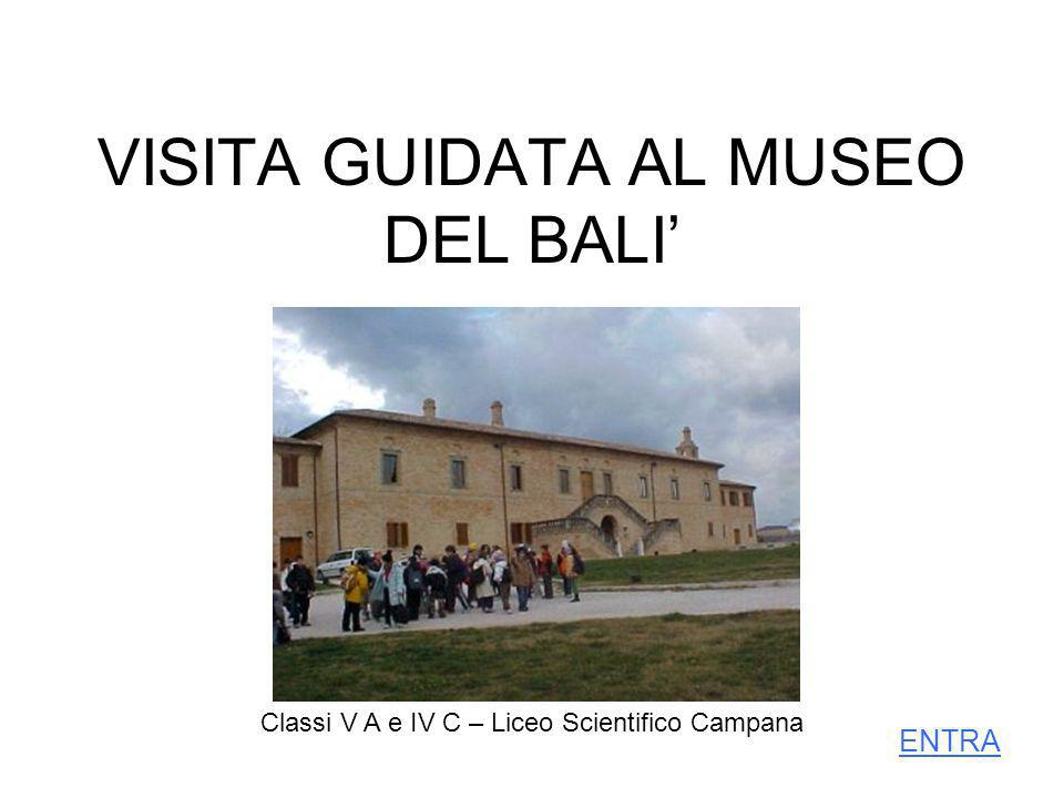 VISITA GUIDATA AL MUSEO DEL BALI'