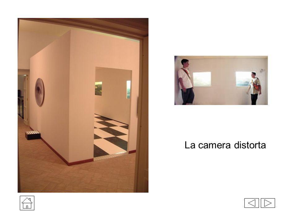 La camera distorta