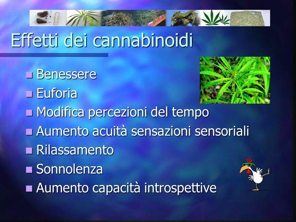 Effetti dei cannabinoidi