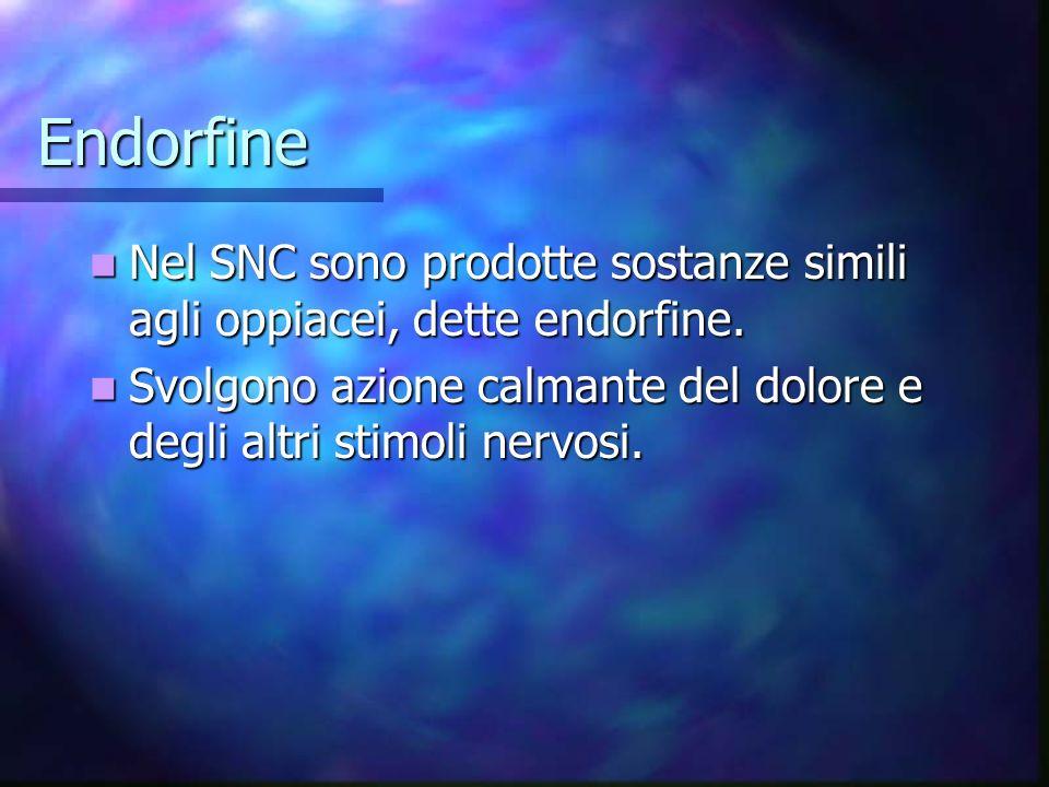 Endorfine Nel SNC sono prodotte sostanze simili agli oppiacei, dette endorfine.