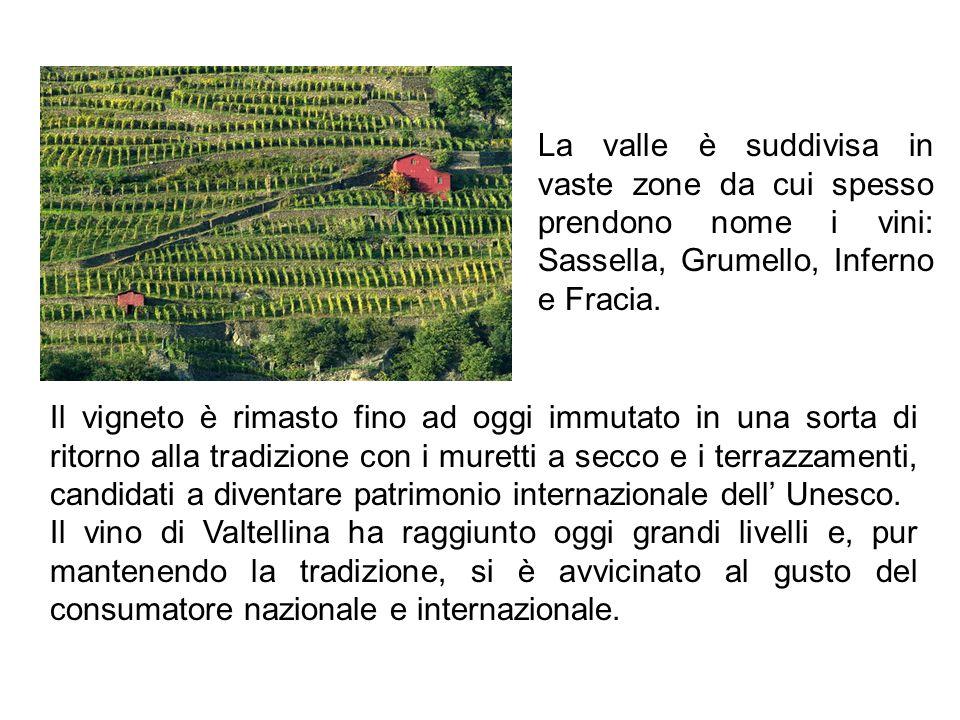 La valle è suddivisa in vaste zone da cui spesso prendono nome i vini: Sassella, Grumello, Inferno e Fracia.