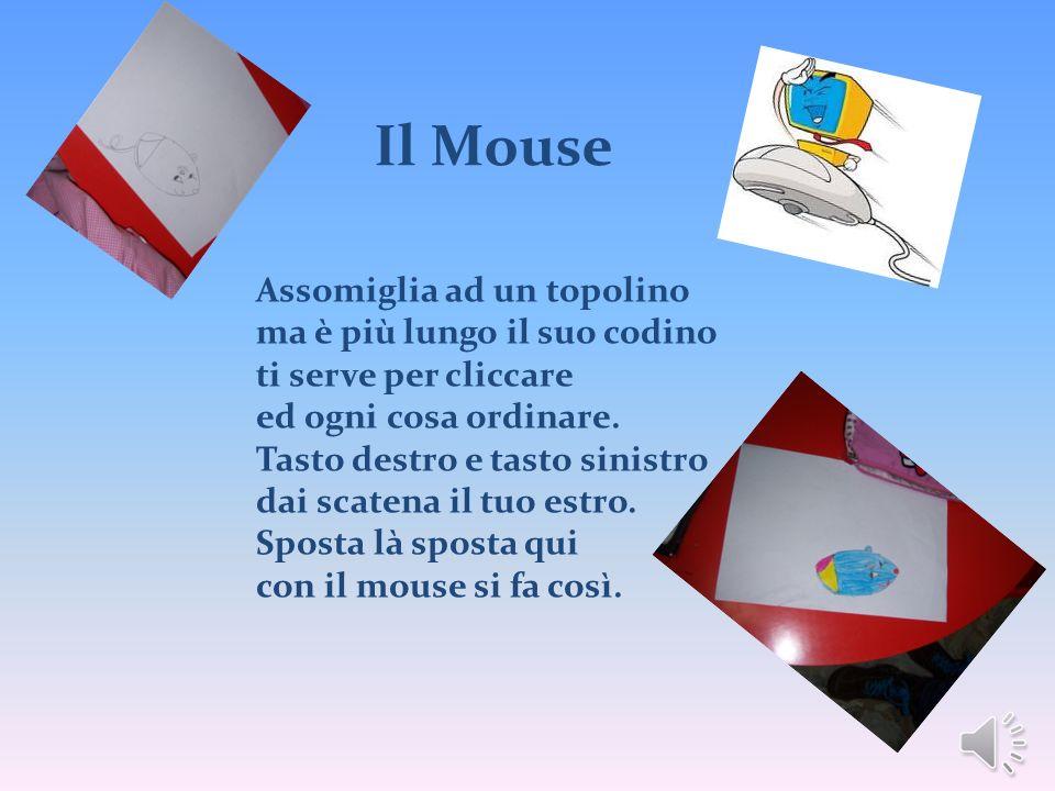 Il Mouse Assomiglia ad un topolino ma è più lungo il suo codino