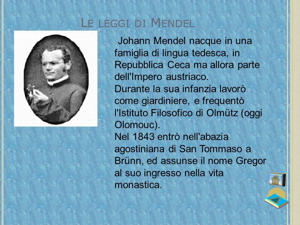Le leggi di Mendel Johann Mendel nacque in una famiglia di lingua tedesca, in Repubblica Ceca ma allora parte dell Impero austriaco.