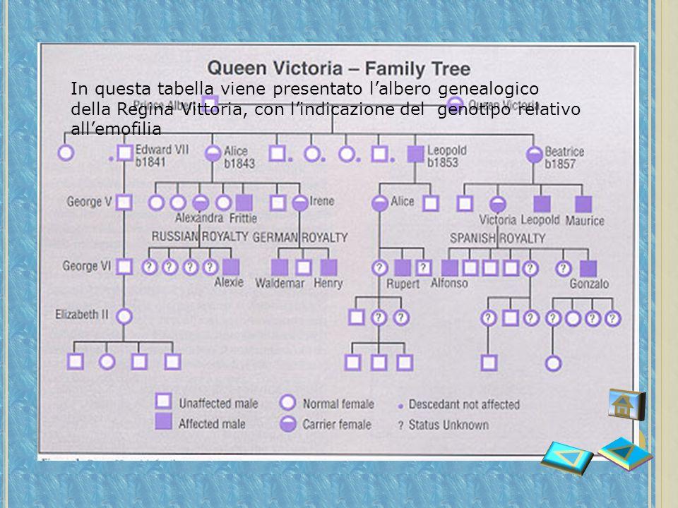 In questa tabella viene presentato l'albero genealogico della Regina Vittoria, con l'indicazione del genotipo relativo all'emofilia