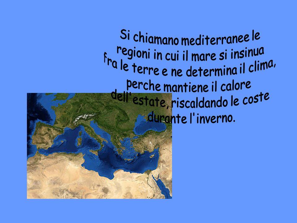 Si chiamano mediterranee le regioni in cui il mare si insinua