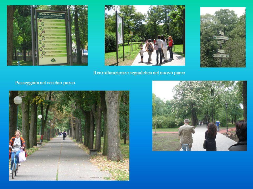 Passeggiata nel vecchio parco