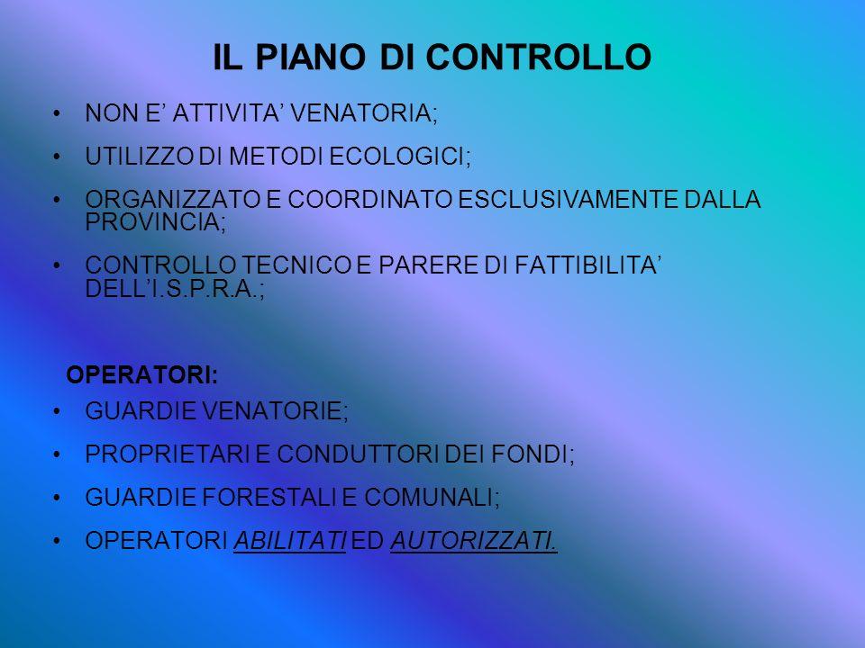 IL PIANO DI CONTROLLO NON E' ATTIVITA' VENATORIA;