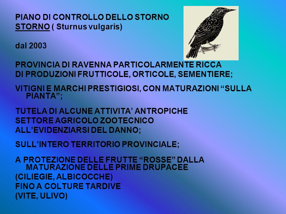 PIANO DI CONTROLLO DELLO STORNO