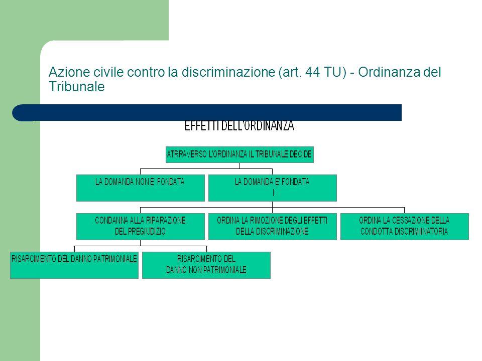 Azione civile contro la discriminazione (art
