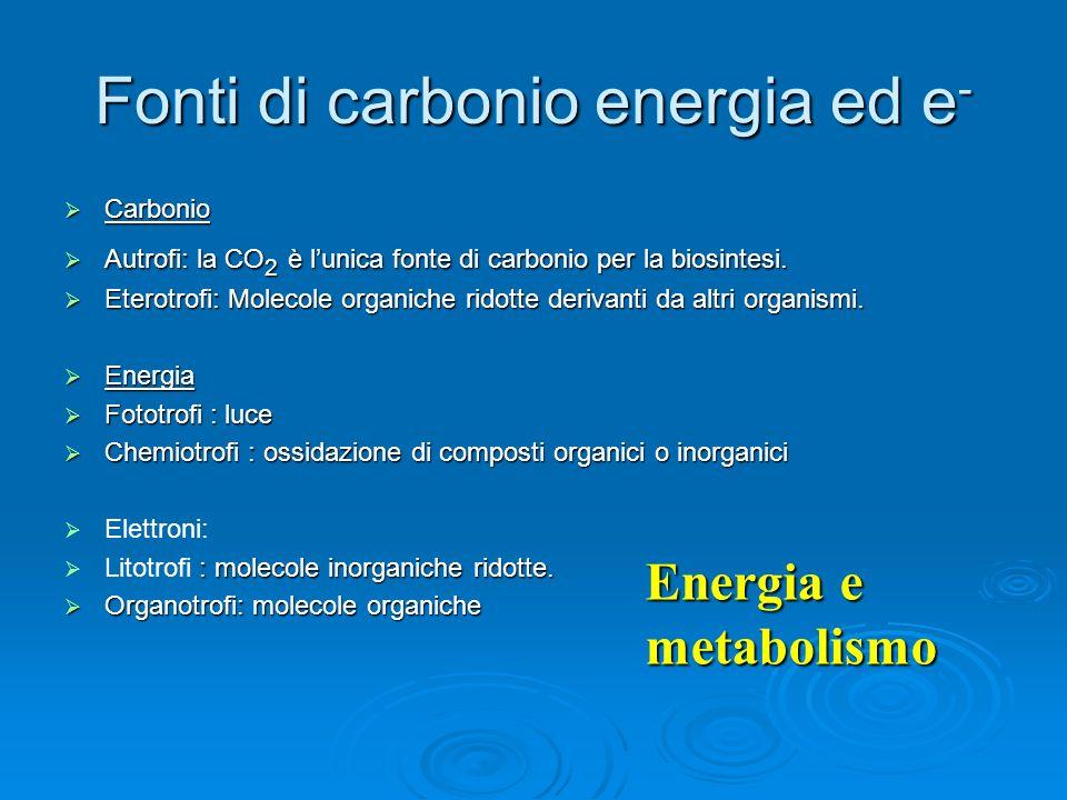 Fonti di carbonio energia ed e-