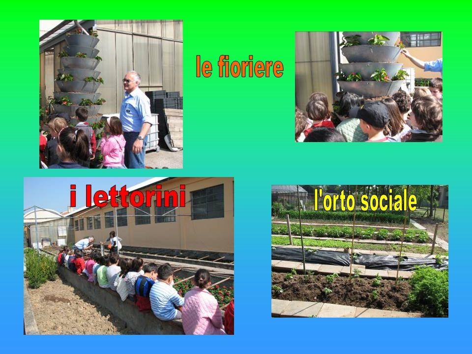 le fioriere i lettorini l orto sociale