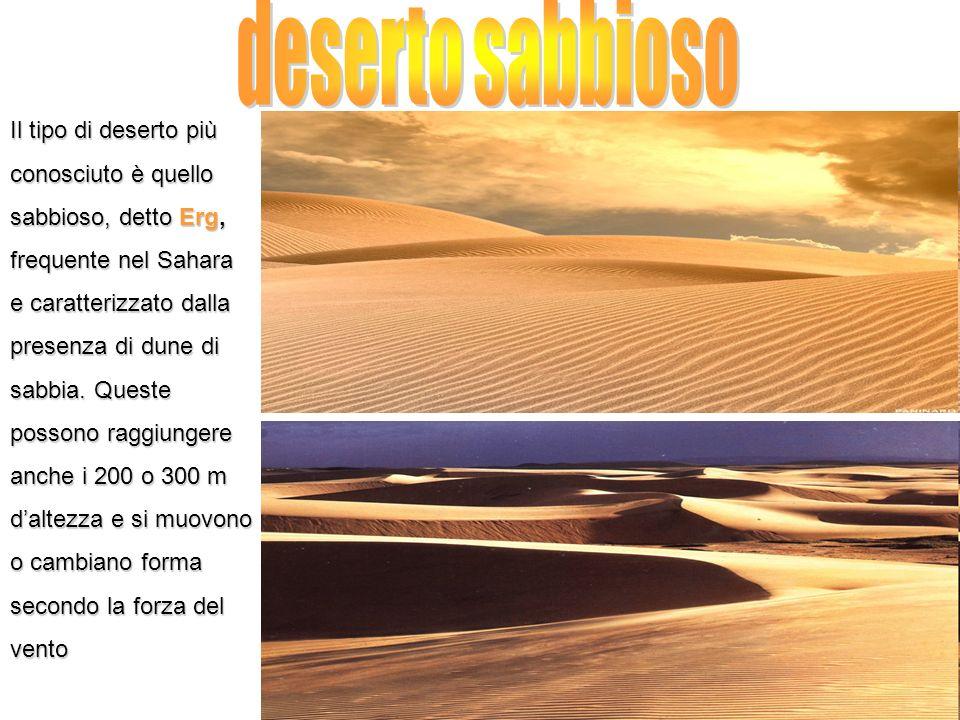 deserto sabbioso Il tipo di deserto più conosciuto è quello
