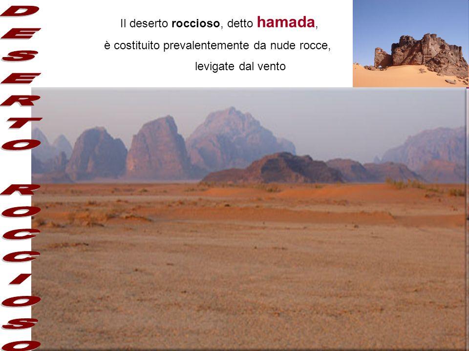 DESERTO ROCCIOSO Il deserto roccioso, detto hamada,