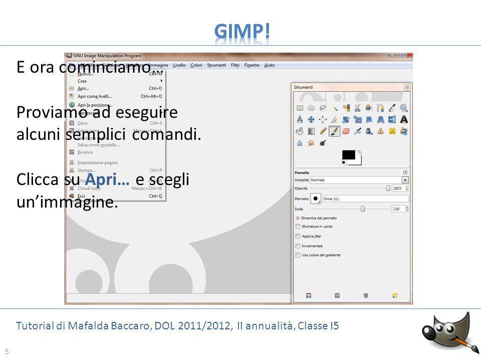 GIMP! E ora cominciamo… Proviamo ad eseguire alcuni semplici comandi.