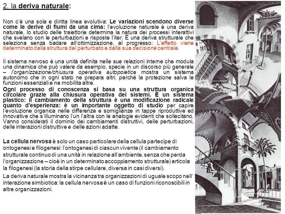 2. la deriva naturale: