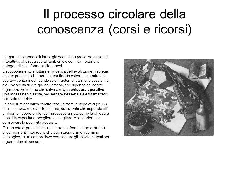 Il processo circolare della conoscenza (corsi e ricorsi)
