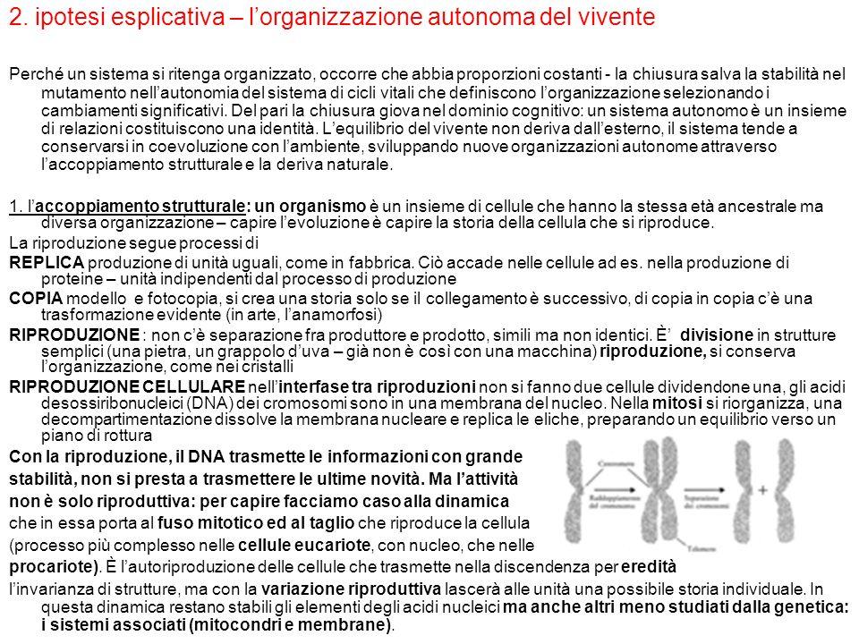 2. ipotesi esplicativa – l'organizzazione autonoma del vivente