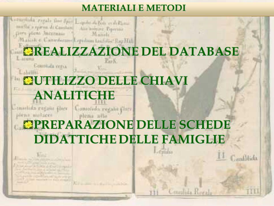 REALIZZAZIONE DEL DATABASE UTILIZZO DELLE CHIAVI ANALITICHE