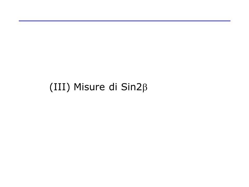 (III) Misure di Sin2b