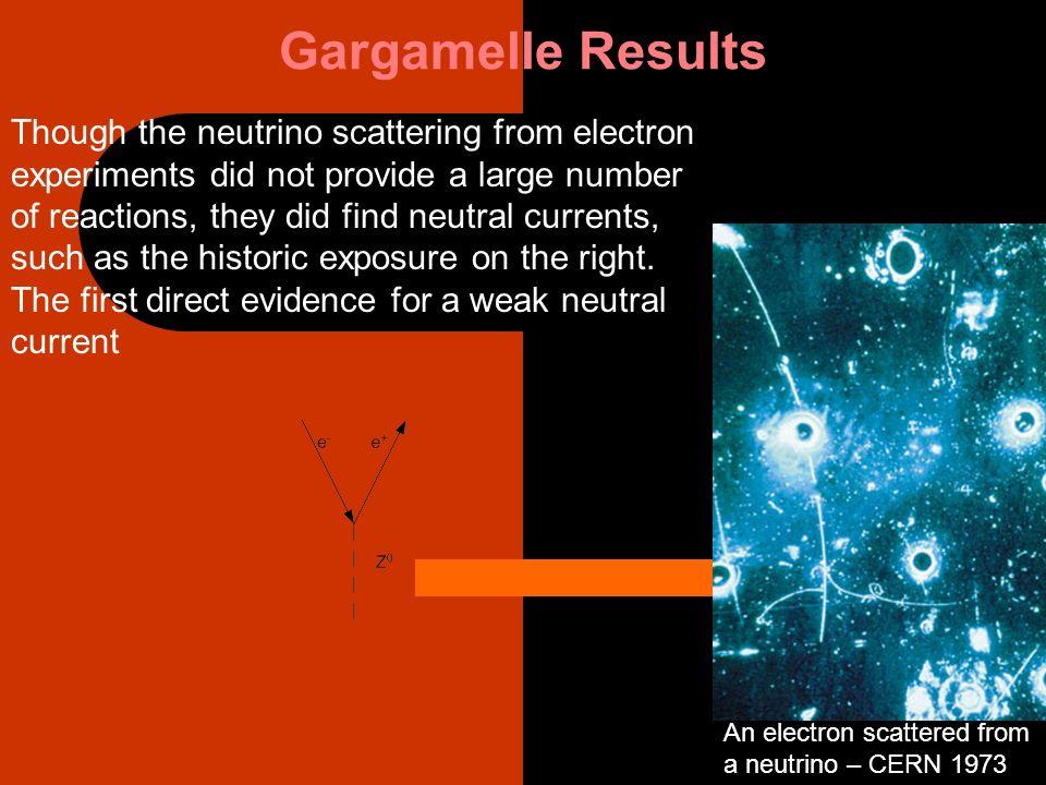 Gargamelle Results