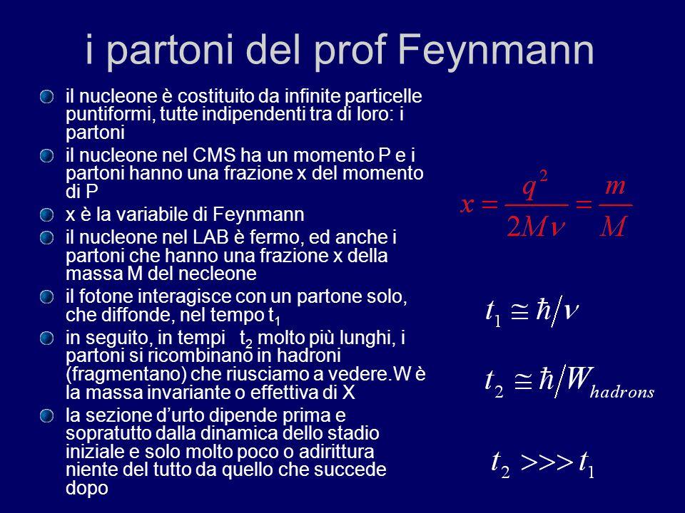 i partoni del prof Feynmann