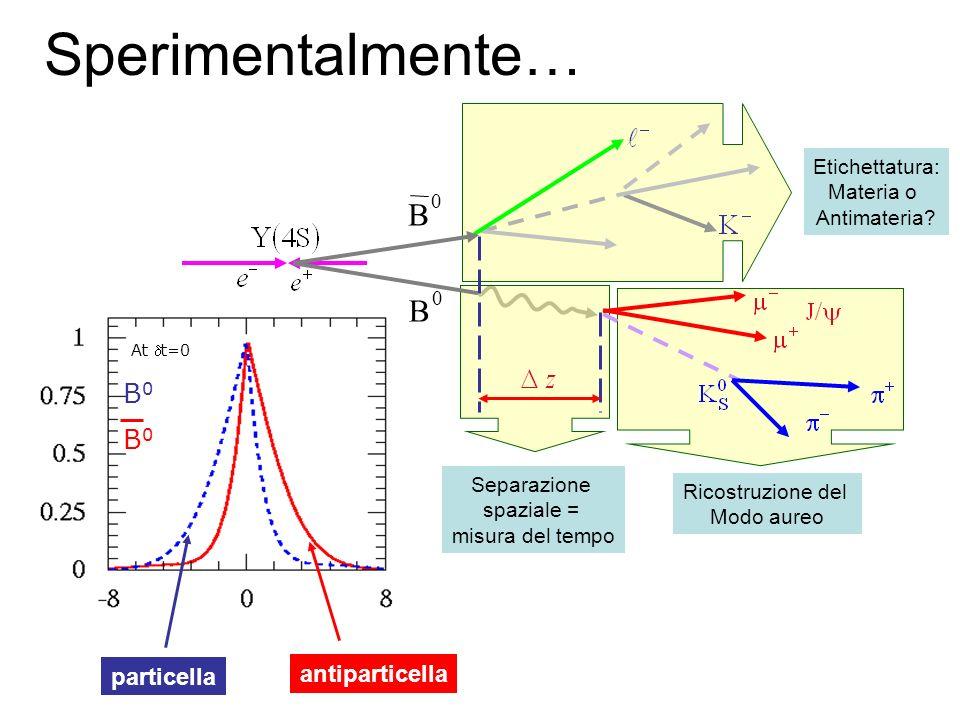 Sperimentalmente… B B0 particella antiparticella Etichettatura: