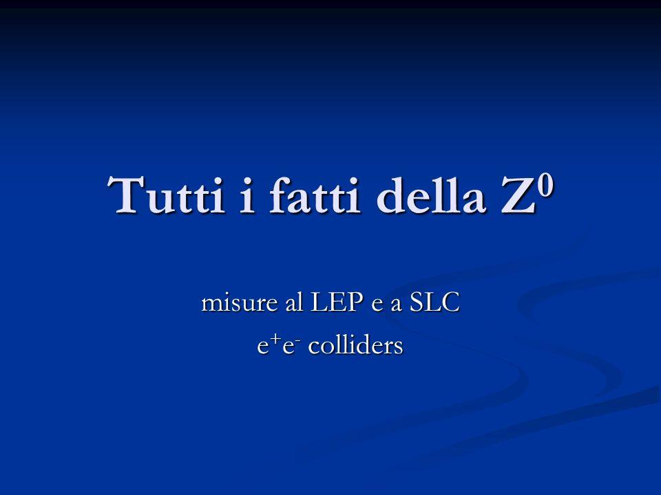 misure al LEP e a SLC e+e- colliders