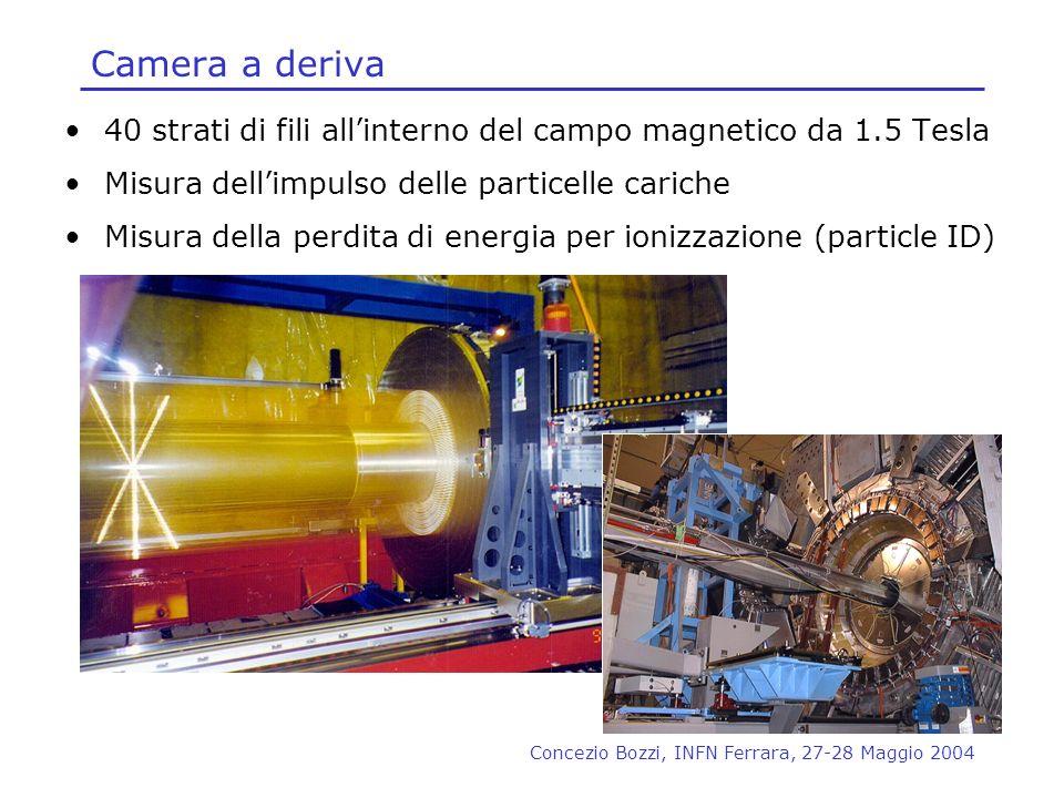 Camera a deriva 40 strati di fili all'interno del campo magnetico da 1.5 Tesla. Misura dell'impulso delle particelle cariche.