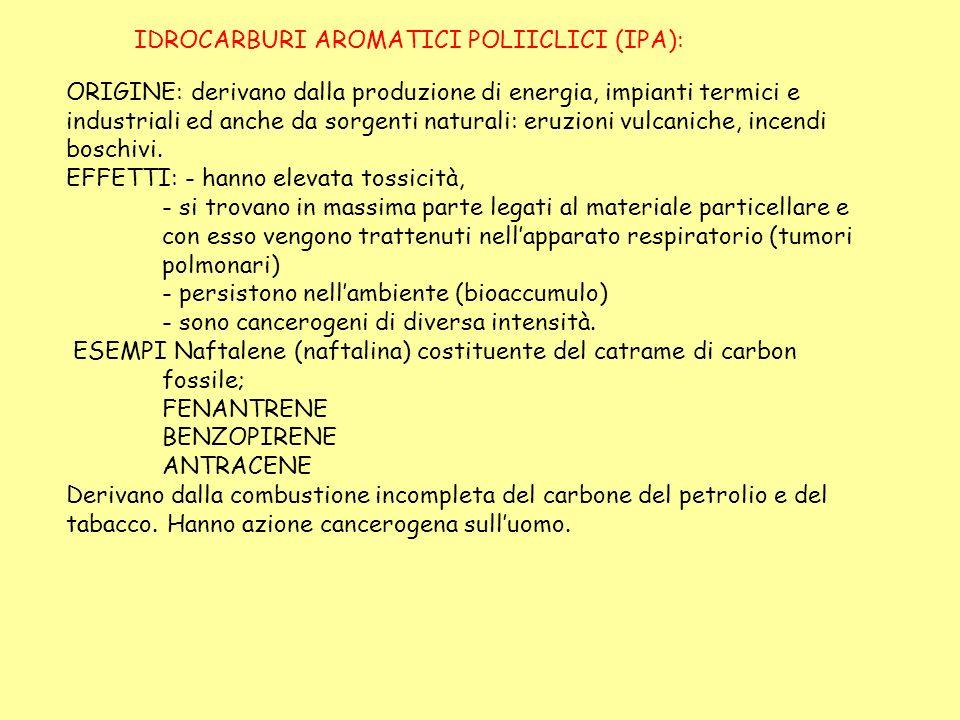 IDROCARBURI AROMATICI POLIICLICI (IPA):