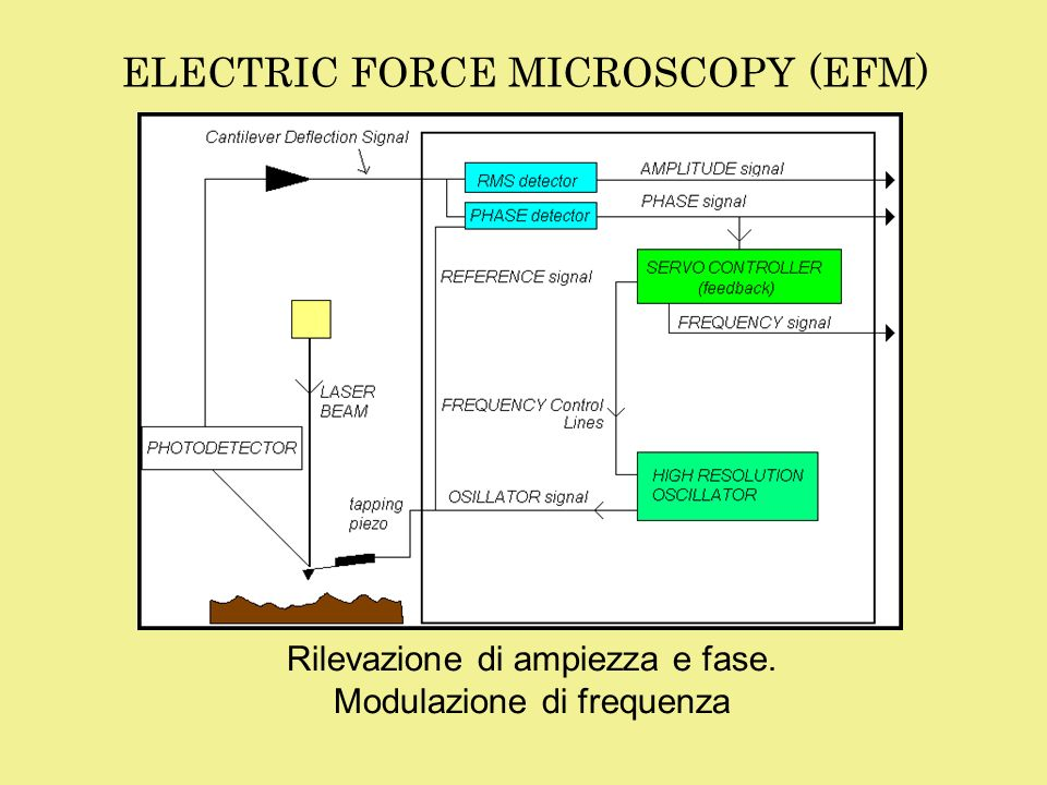 ELECTRIC FORCE MICROSCOPY (EFM)