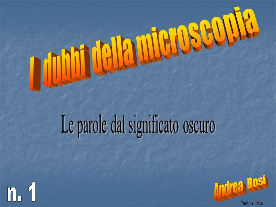 I dubbi della microscopia