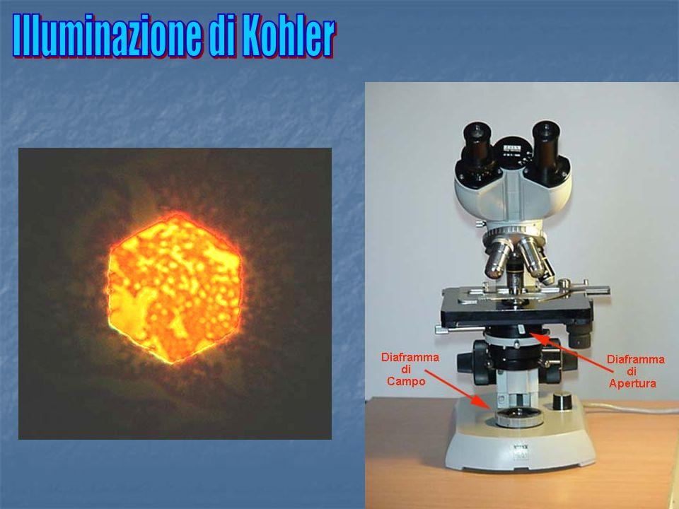 Illuminazione di Kohler