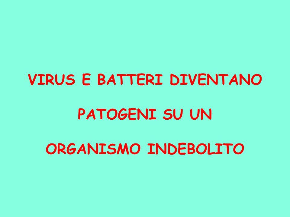 VIRUS E BATTERI DIVENTANO