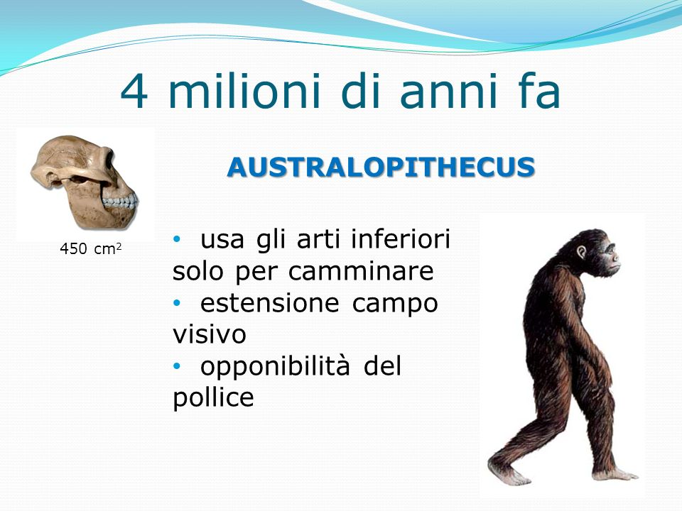 4 milioni di anni fa AUSTRALOPITHECUS