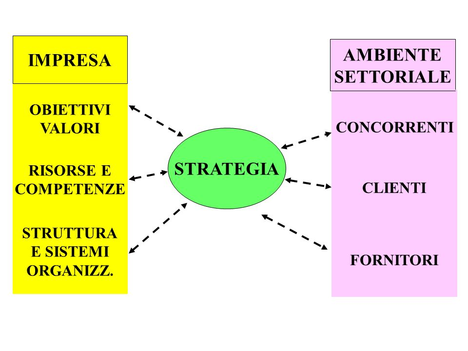 IMPRESA AMBIENTE SETTORIALE STRATEGIA
