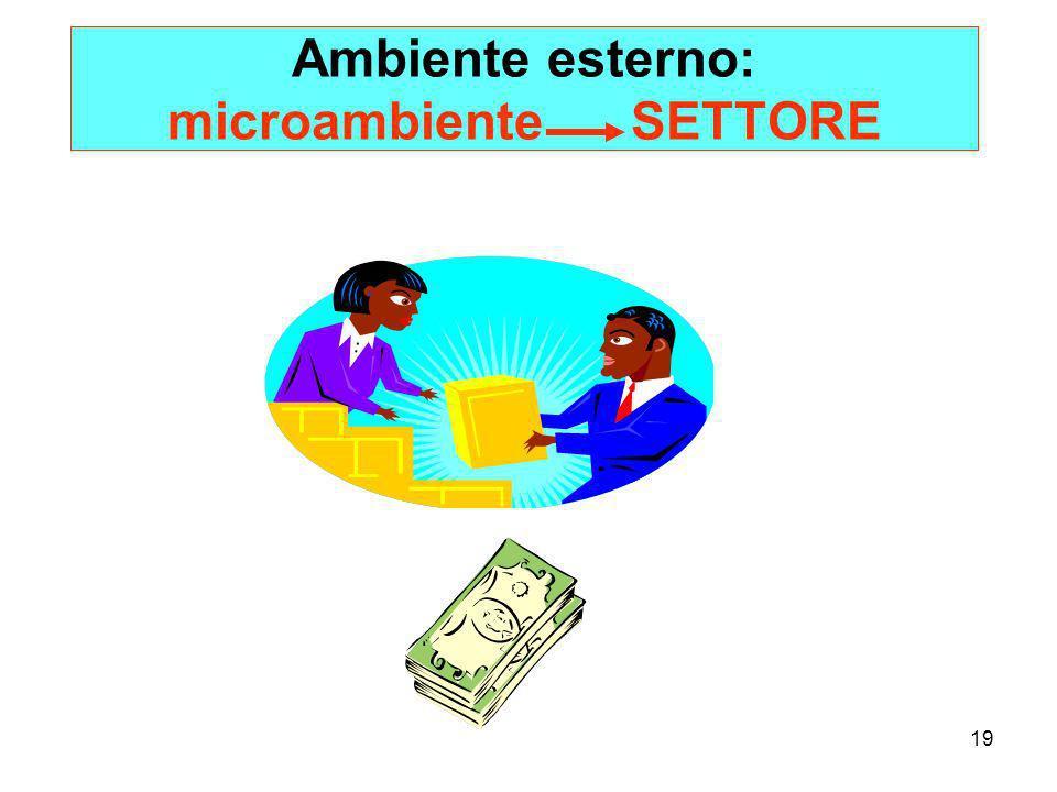 Ambiente esterno: microambiente SETTORE