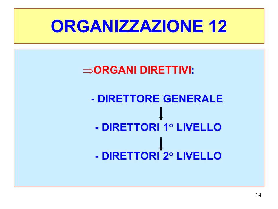 ORGANIZZAZIONE 12 ORGANI DIRETTIVI: - DIRETTORE GENERALE