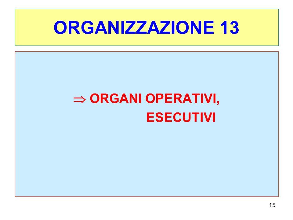ORGANIZZAZIONE 13  ORGANI OPERATIVI, ESECUTIVI