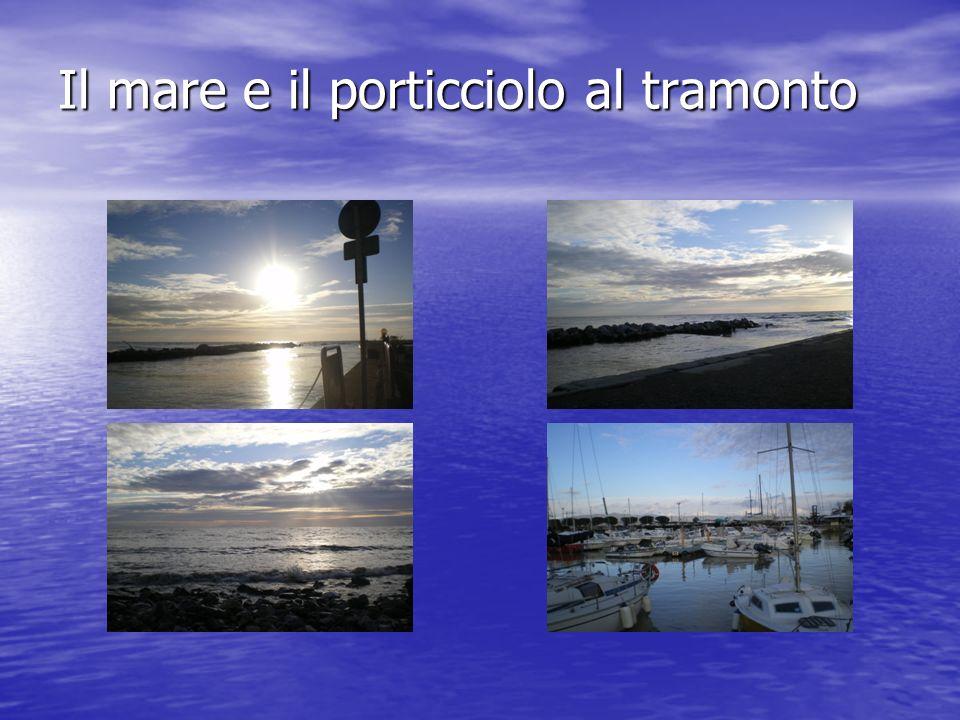 Il mare e il porticciolo al tramonto