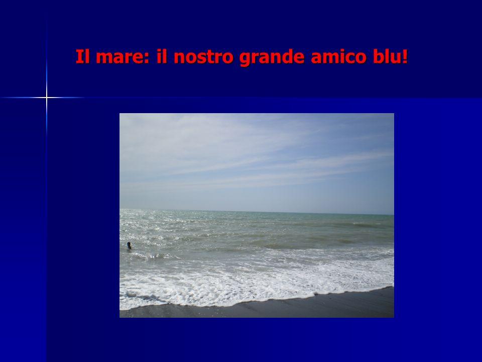 Il mare: il nostro grande amico blu!