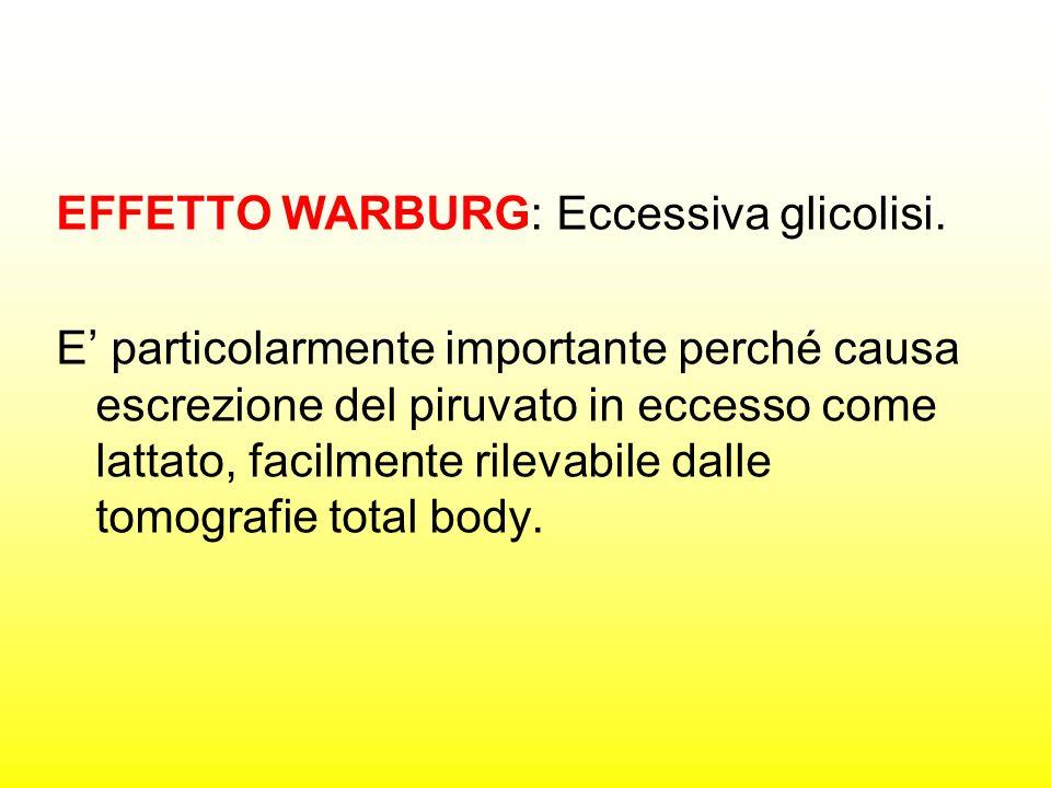 EFFETTO WARBURG: Eccessiva glicolisi.