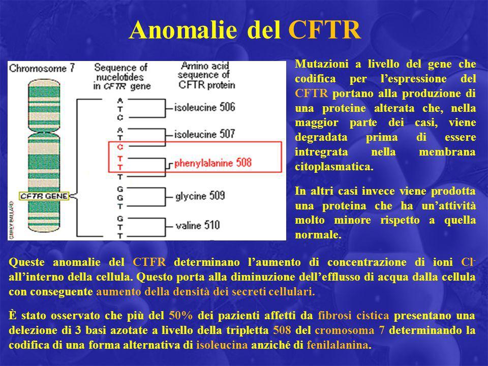 Anomalie del CFTR