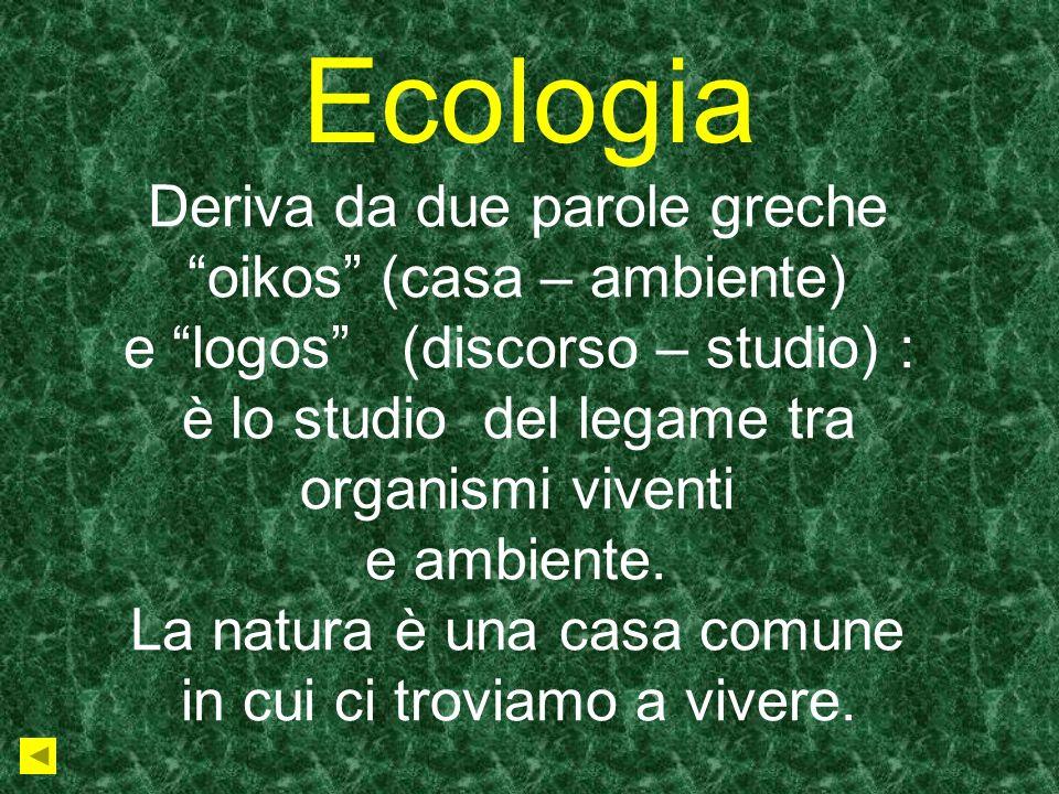 Ecologia Deriva da due parole greche oikos (casa – ambiente)