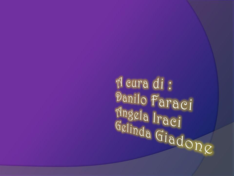 A cura di : Danilo Faraci Angela Iraci Gelinda Giadone