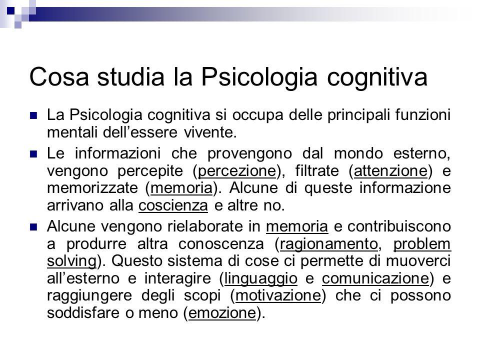 Cosa studia la Psicologia cognitiva