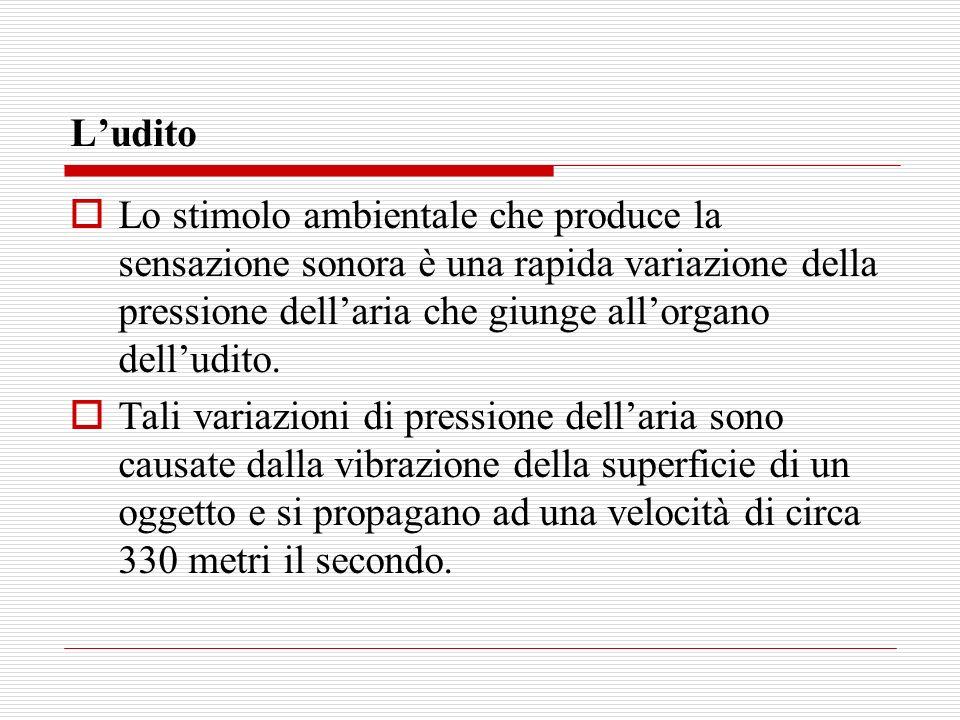 L'udito Lo stimolo ambientale che produce la sensazione sonora è una rapida variazione della pressione dell'aria che giunge all'organo dell'udito.
