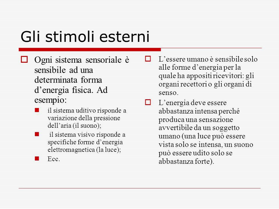 Gli stimoli esterniOgni sistema sensoriale è sensibile ad una determinata forma d'energia fisica. Ad esempio:
