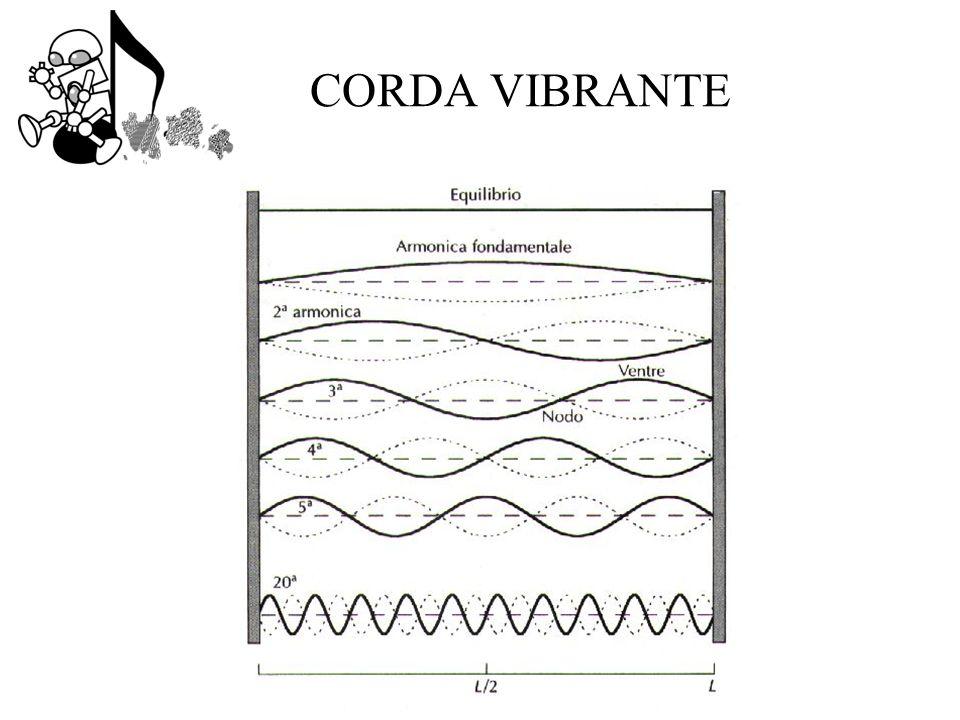 CORDA VIBRANTE