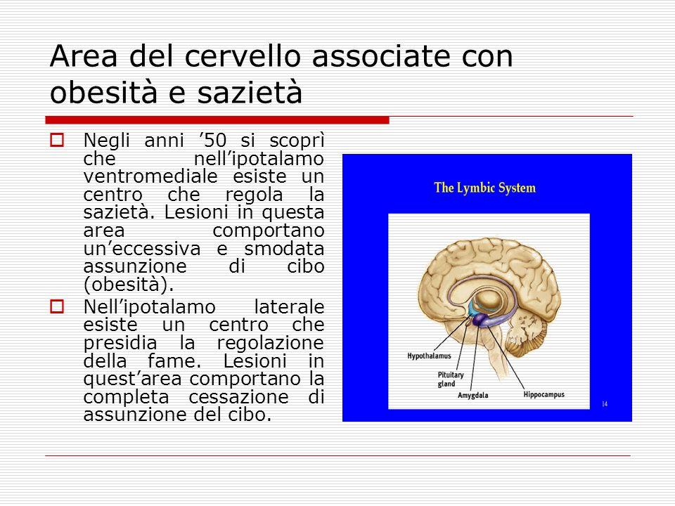 Area del cervello associate con obesità e sazietà